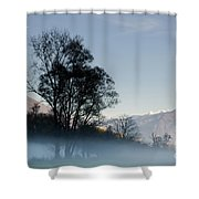 Tree With Fog On Field And Shower Curtain