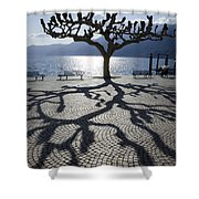 Tree With Shadow Shower Curtain