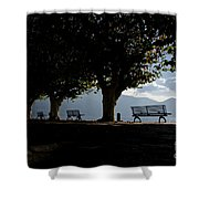 Trees And Benches Shower Curtain