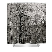 Trees And Hillside Shower Curtain