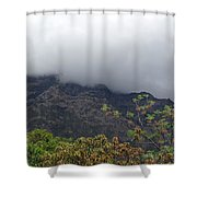 Trees And Leaves At The Base Of A Mountain With Clouds And Mist Covering The Top Shower Curtain