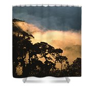 Trees And Mountaintops Above The Clouds Shower Curtain