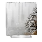 Trees And Pampas Grass Shower Curtain