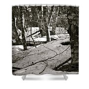 Trees And Snow In April Shower Curtain