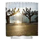 Trees And Sunset Shower Curtain