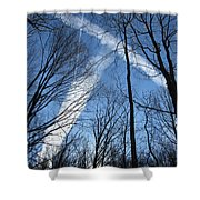 Trees And Trails Shower Curtain