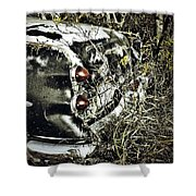 Trees And Trunk Shower Curtain