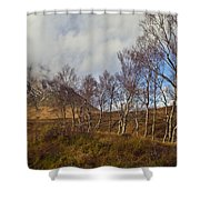 Trees Below Stob Dearg Shower Curtain by Gary Eason