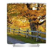 Trees In Autumn Colours And A Fence Shower Curtain