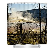 Trees In Nature Shower Curtain