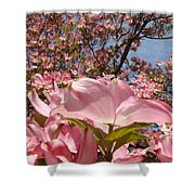 Trees Nature Fine Art Prints Pink Dogwood Flowers Shower Curtain by Baslee Troutman