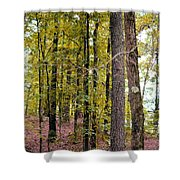 Trees Of Golden Hues Shower Curtain