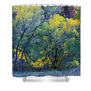 Trees On Edge Of Field In Autumn Shower Curtain