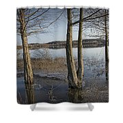 Trees On Flooded Riverbank No.1001 Shower Curtain