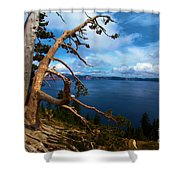 Trees On The Crater Shower Curtain