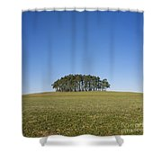 Trees On The Hill Shower Curtain