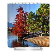 Trees On The Lake Front In Autumn Shower Curtain