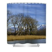 Trees On The Lakefront Shower Curtain