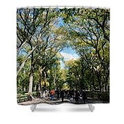 Trees On The Mall In Central Park Shower Curtain