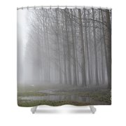 Trees With Fog And Snow Shower Curtain