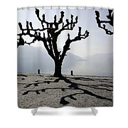 Trees With Shadows Shower Curtain