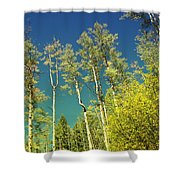Treetop Color Shower Curtain