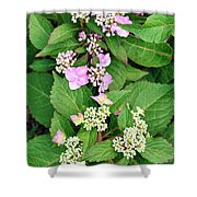 Trickles Of Color Shower Curtain