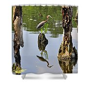 Tricolored Reflection Shower Curtain