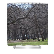 Trinity Park Ft Worth Tx Shower Curtain