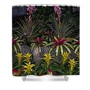 Tropical 1 Shower Curtain by Wanda J King