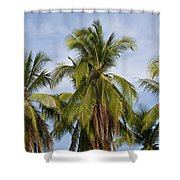 Tropical Cliche Shower Curtain