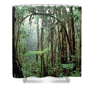 Tropical Cloud Forest Shower Curtain
