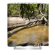 Tropical Destruction Shower Curtain