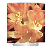 Tropical Glow Shower Curtain