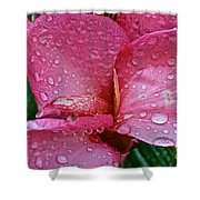 Tropical Rose Shower Curtain by Susan Herber
