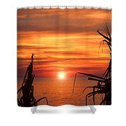 Tropical Sunset V6  Shower Curtain