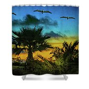 Tropical Sunset With Pelicans Shower Curtain