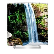 Tropical Waterfall And Pond Shower Curtain