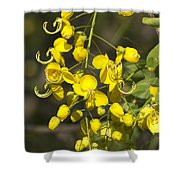 Tropical Yellow Flowers Shower Curtain