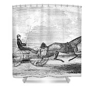Trotting Horse, 1853 Shower Curtain