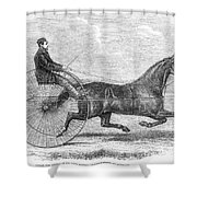 Trotting Horse, 1861 Shower Curtain