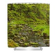 Trout Run Creek 4 Shower Curtain