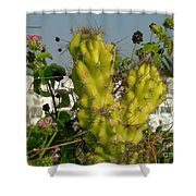 True Beauty Has Thorns Shower Curtain