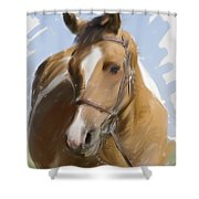 Trusted Steed Shower Curtain