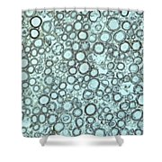 Ts Nerve Trunk Shower Curtain