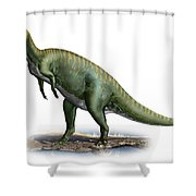Tsintaosaurus Spinorhinus Shower Curtain