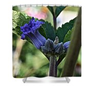 Tube Clematis Shower Curtain