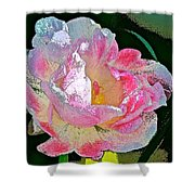 Tulip 44 Shower Curtain