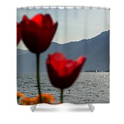 Tulip And Lake Shower Curtain