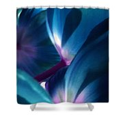 Tulip Blues Shower Curtain